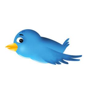 Соединить блог и Твиттер
