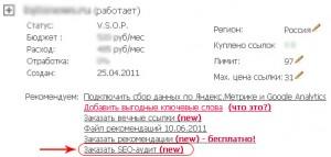 Профессиональный SEO-аудит от Webeffector