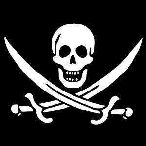 Суть пираты силиконовой долины