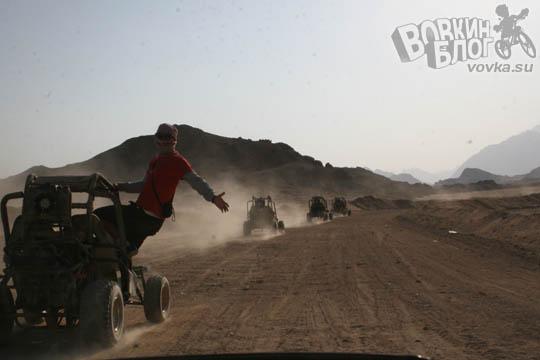 Сафари в Египте с Zip-archive