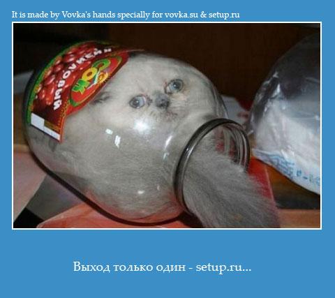 Setup.ru найдет во всем выход