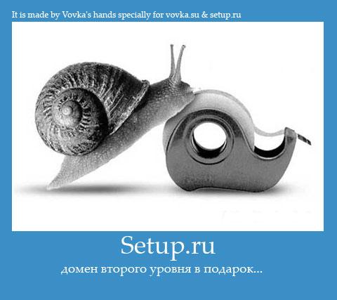Домены в подарок от setup.ru