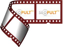 Вовка в гостях у Seopult TV