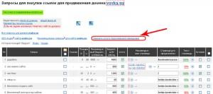 Персональный менеджер в Megaindex.ru