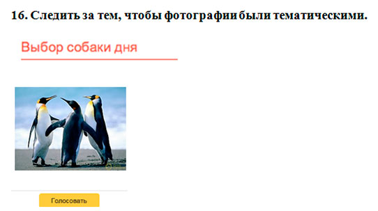 Vtest ru анализ сайта онлайн