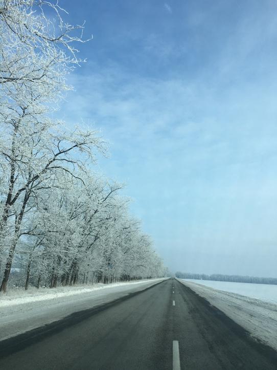 Красивая зима 2015