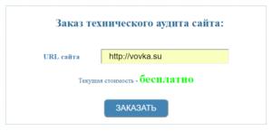 Подача заявки на технический аудит сайта в IceLab